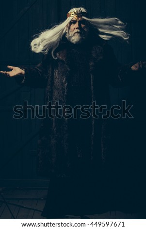 old druid bearded man with long beard on serious face and hair in fur coat and crown with gem stones jewellery on wooden background