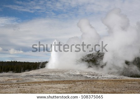 Old Faithful 9