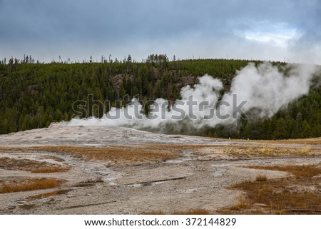 Old Faithful geyser at dawn in Yellowstone National Park.