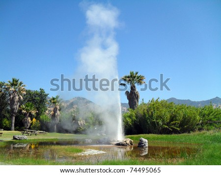 old faithful geyser in napa valley - stock photo