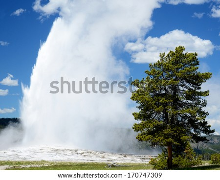 Old Faithful Geyser shoots steam in the air in Yellowstone National Park. - stock photo
