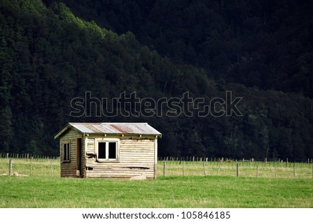 Old farm building with sheep in south Island, New Zealand. - stock photo
