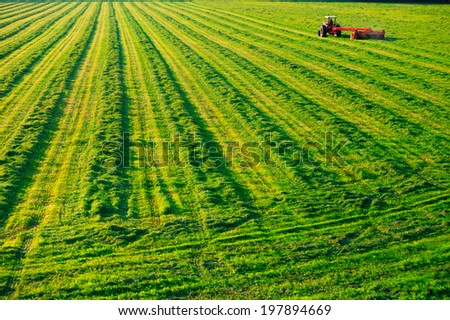 Old farm tractor in a mowed field in Stowe Vermont, USA - stock photo