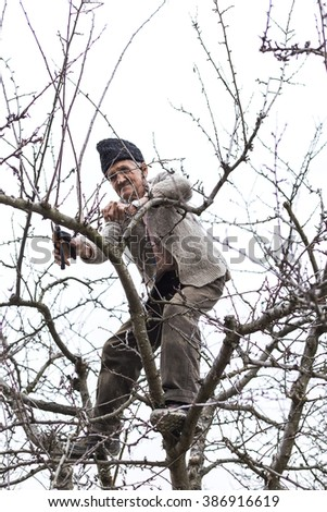 Old farmer trimming trees in his orchard in spring