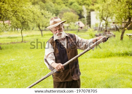 Old farmer with beard preparing his scythe before using to mow the grass traditionally - stock photo