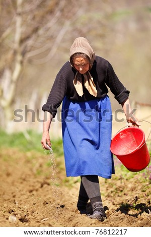 Old farmer woman sowing seeds mixed with fertilizer from a bucket - stock photo