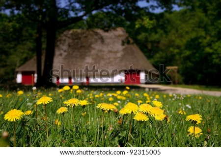 Old farmhouse on a sunny day in rural belgium, surrounded with trees. Blooming dandelions in foreground. shallow depth of field. - stock photo