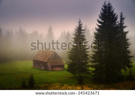 Old farmhouse on the transylvanian field - stock photo