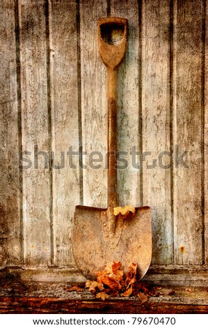 old fashion spade with dry leaves against an old wooden wall. - stock photo