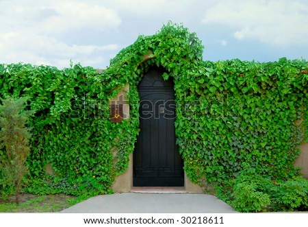 old-fashioned cottage door, green leafs and sky - stock photo