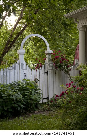 Old-fashioned garden gate with climbing tea roses.