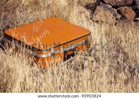 Old Fashioned Suitcase in yellow grass - stock photo