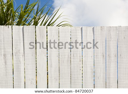 Old fashioned whitewashed board fence ready for your message or graffiti. Good background with leaves, and sky above fence. - stock photo