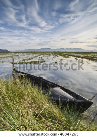 Old fishing boat tied in the paddy fields - stock photo