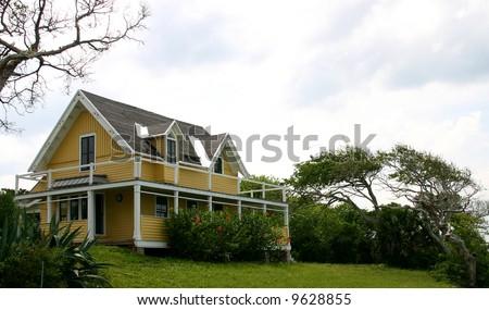 old Florida Beach House and wind-blown tree isolated against a white sky PHOTOID: Beach-House00002 - stock photo