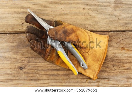 Old gardening glove with a pair of secateurs on a wooden board - stock photo