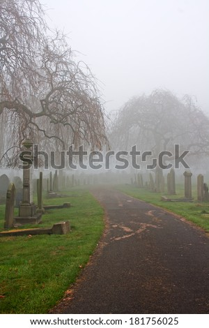 Old gravestones in cemetery dating back to 1856 - stock photo