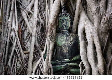 Old green buddha statue of Buddhism religion in the tree.made by retouch - concept Buddhist Lent Day is an important day for Buddhists - stock photo