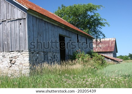 old grey Wisconsin barn in summer - stock photo