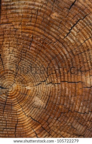 old grey wood textured for abstract background - stock photo