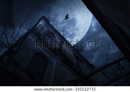 Old grunge building with bird and dead tree at night over cloudy sky and the moon behind, mysterious background - stock photo