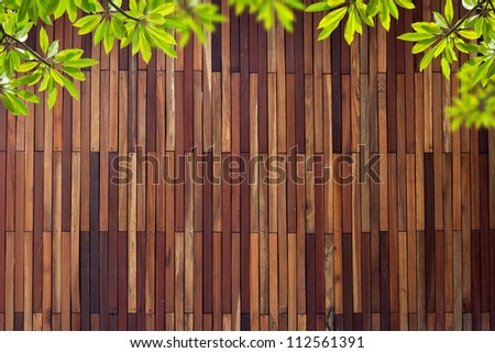 Old grunge Wood wall Texture with leaves use for background