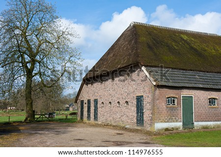 Old historic farmhouse in the Netherlands with reed roof - stock photo