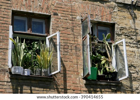 Old house alarm. Detail of the facade crumbling house. Living in a poor area. Potted flowers on the windowsill