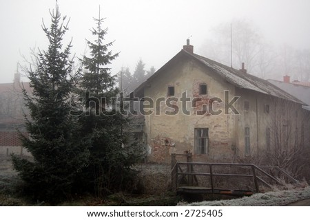 Old house and two pine trees