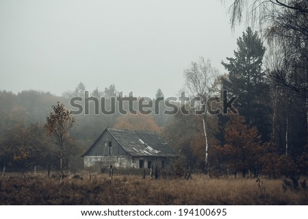 Old house in the forest, misty morning - stock photo
