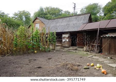 Old house in the village, Transcarpathia - stock photo