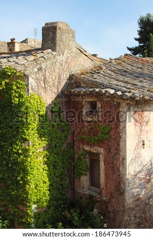 Old house with plants on walls, Provence, France - stock photo