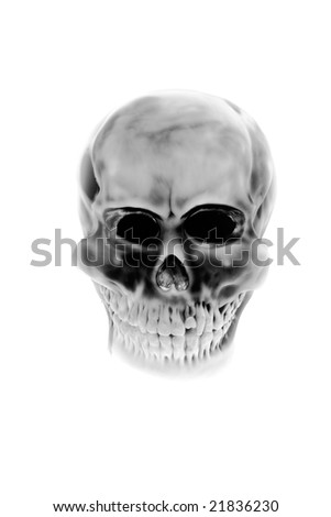 Old human skull on the white background