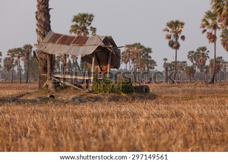 Old hut in a field. - stock photo