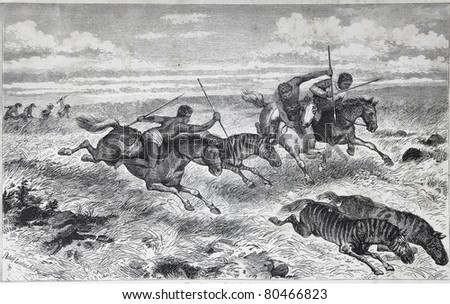 """Old illustration depicting Barolong tribe in South Africa hunting zebras, drawn by Adolf Liebscher in Emil Holub's """"Seven Years in South Africa"""", published in Vienna, 1881 - stock photo"""