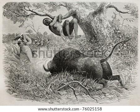 Old illustration of  famous explorer Captain John Hanning Speke shooting a buffalo. Created by Bayard, published on Le Tour du Monde, Paris, 1864 - stock photo