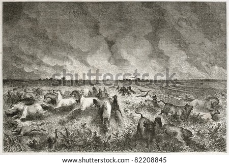 Old illustration of fire in north-American prairie and animals escaping. Created by Dore after Caitlin, published on Le Tour du Monde, Paris, 1860 - stock photo