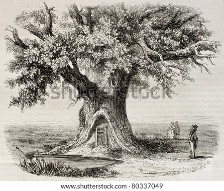 Old illustration of the Chene de Montravail (Oak of Montravail) in the Forest of Fointanbleau, France. Created by Mely, published on Magasin Pittoresque, Paris, 1850