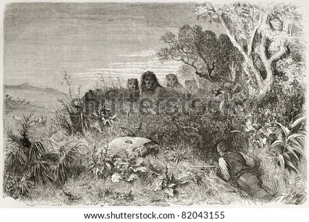 Old illustration of unexpected hunting companions. Created by Dore after Anderson, published on Le Tour du Monde, Paris, 1860