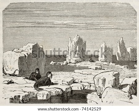 Old illustration of walruses on polar ice pack. Original, from unknown author, was published on L'Eau, by G. Tissandier, Hachette, Paris, 1873 - stock photo