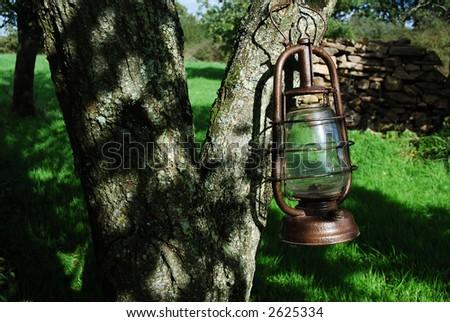 Old kerosene lamp hanged on a tree - stock photo