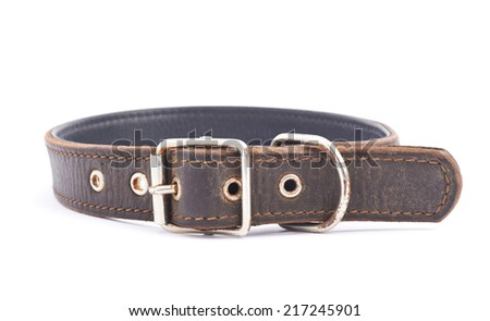 Old leather dog-collar isolated over the white background, side view - stock photo