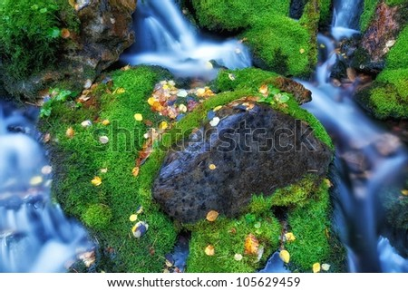 old log in the moss in the waterfall with autumn leaves/The Moss Surrounded rock / moss waterfall - stock photo