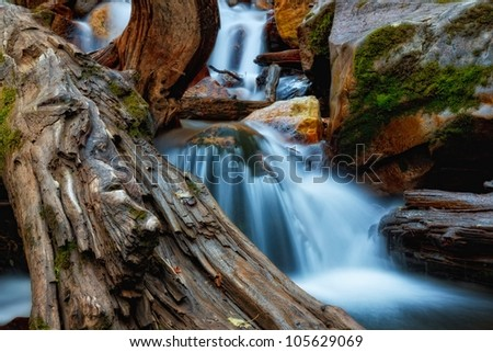 old log in the water/ The Log in the Creek/ Waterfalls