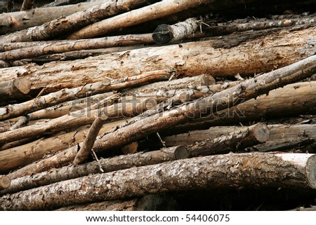 Old Log Pile - stock photo