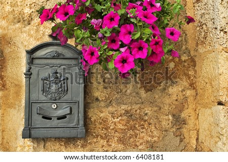Old-looking mailbox with petunias on rough wall - stock photo