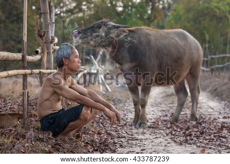 Old man and buffalo - stock photo