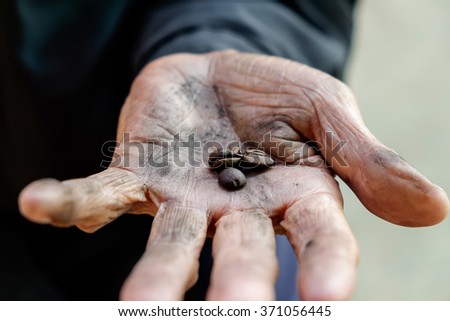 Old man hands holding coffee beans - stock photo