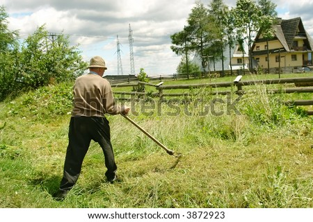 Old man mowing down grass with scythe