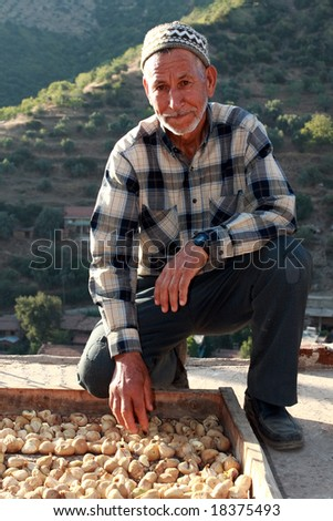 old man working with dried fruits - stock photo